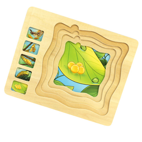 Wooden Butterfly Lifecycle Puzzle