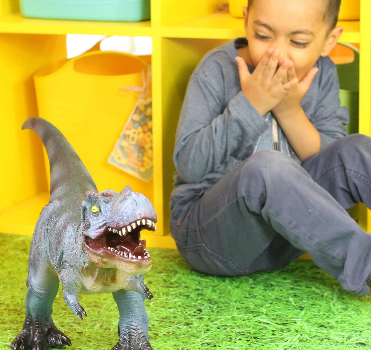 Developed for the early years, these Dino resources are attractive and stimulate curiosity in small world and the world we live in.