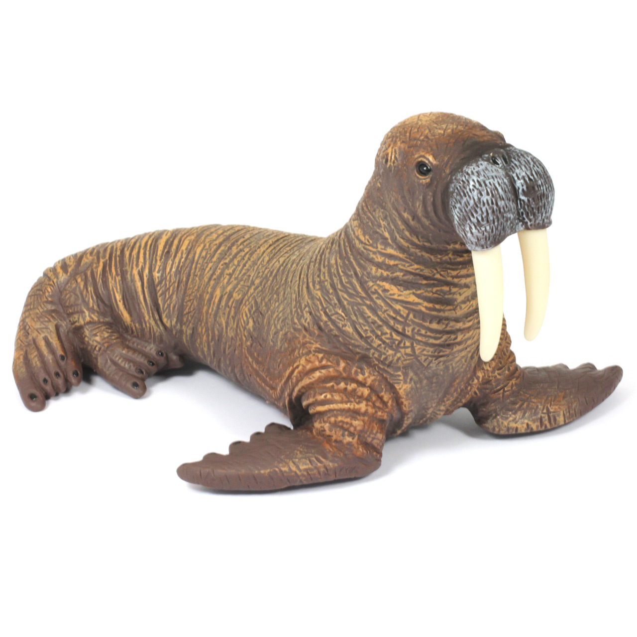 Walrus Set 1 x 8inch Medium plus 4 x 4inch Small