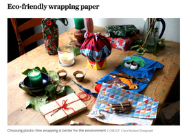 The Telegraph - How to have an eco-friendly Christmas