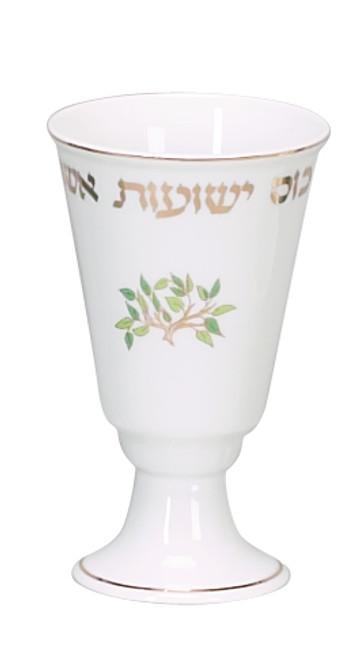 Elijah Cup Kos Yesout