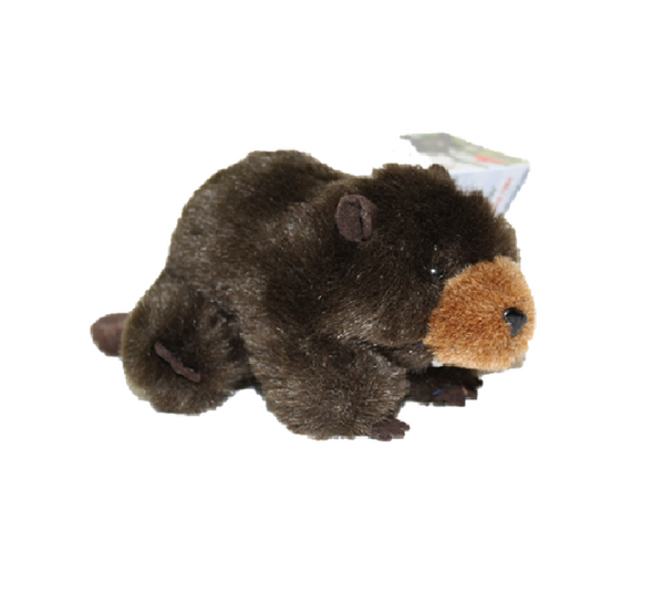 Stuffed. Beaver
