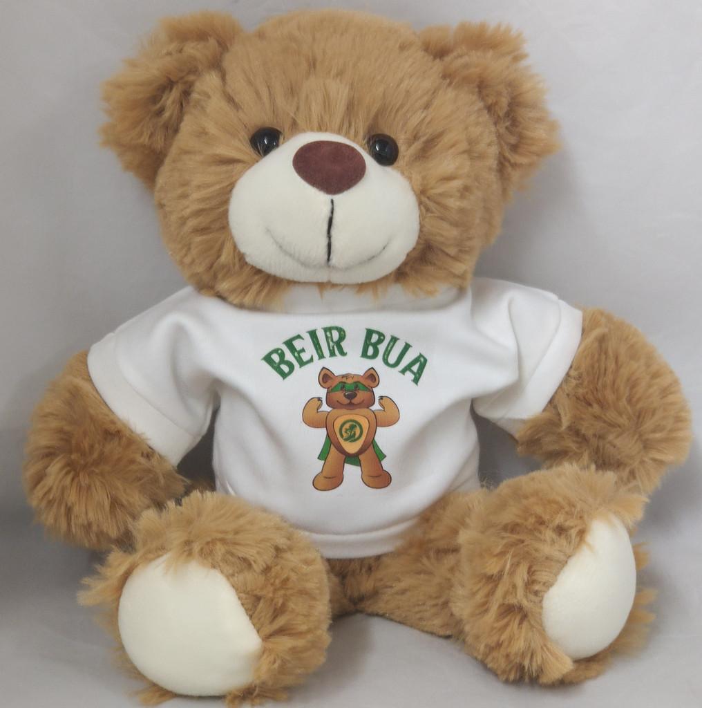 Beir Bua Teddy Bear