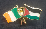 Ireland & Palestine badge