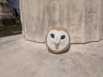 White Owl Bath Bomb