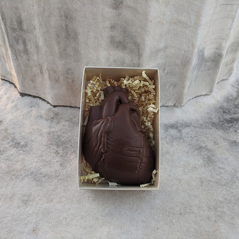 Anatomical Heart Solid Chocolate