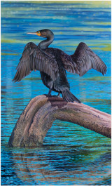 """Cormorant the Great"" - an original oil painting by Swapnil Nevgi"