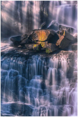 """Ebor Elegance"" - fine art photo print of Ebor waterfalls by Swapnil Nevgi"