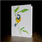 "Greeting card - made from art print of my original art ""Golden Whistler"""