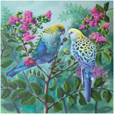 """""""Two Souls"""" - an original oil painting by Australian artist Swapnil Nevgi showing a pair of Pale Headed Rosellas"""
