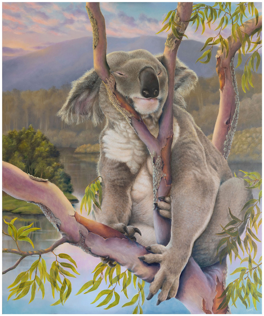 """Sleeping Beauty"" - an original oil painting of Koala by Swapnil Nevgi"