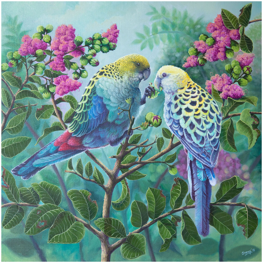 """Limited edition prints of the original painting """"Two Souls"""" which show two pale headed rosella birds by Australian artist Swapnil Nevgi"""