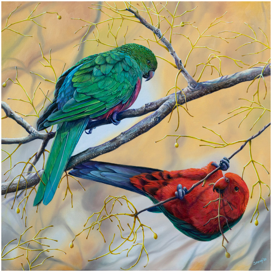 """The Royals"" - Limited edition prints of King Parrots painting by Swapnil Nevgi"