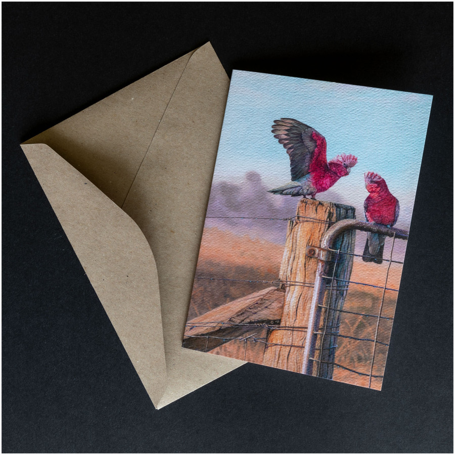 'Galahs' greeting card shown with the envelope supplied