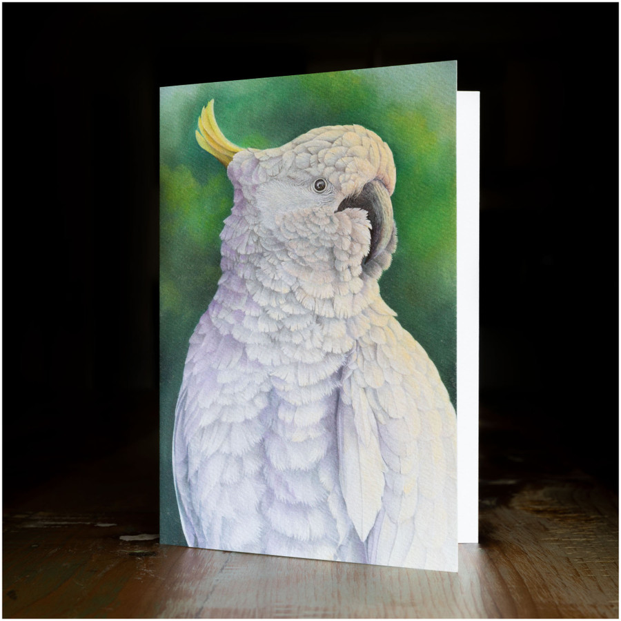 """Greeting card - made from art print of my original art """"Sulpher Crested Cockatoo"""""""