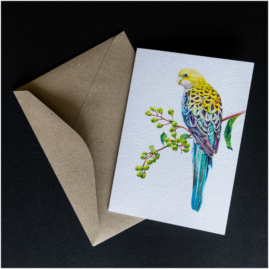 'Pale Headed Rosella' greeting card shown with the envelope supplied