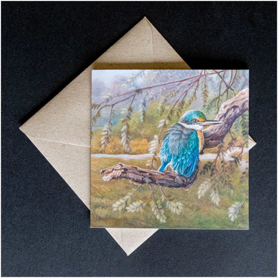 'Sacred Kingfisher' greeting card shown with the envelope supplied