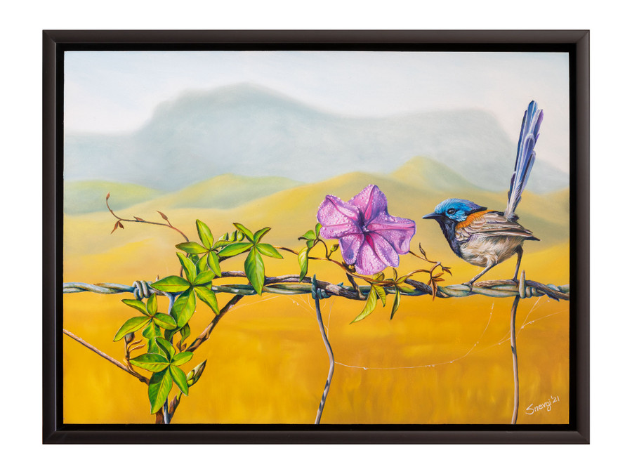 """""""Floral Affair"""" - an oil painting of variegated fairy wren by Swapnil Nevgi shown in it's original frame"""