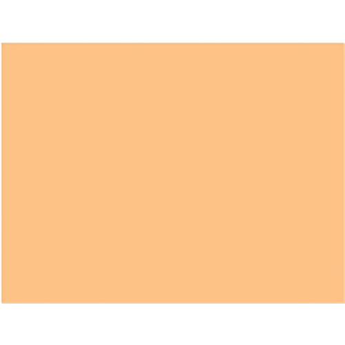 "Rosco Cinegel 20x24"" Filter - #3408 1/2 Amber RoscoSun CTO"