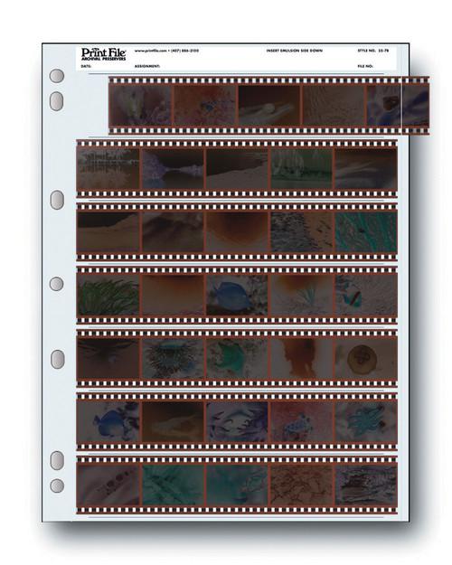 Print File Archival 35mm Negative Preservers- 35-7B, 25 Sheets