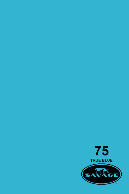 Savage Widetone Background Paper 107 Inch x 12 Yard Roll - #75 True Blue