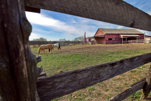 Kids Photography Scavenger Hunt at Pioneer Farms