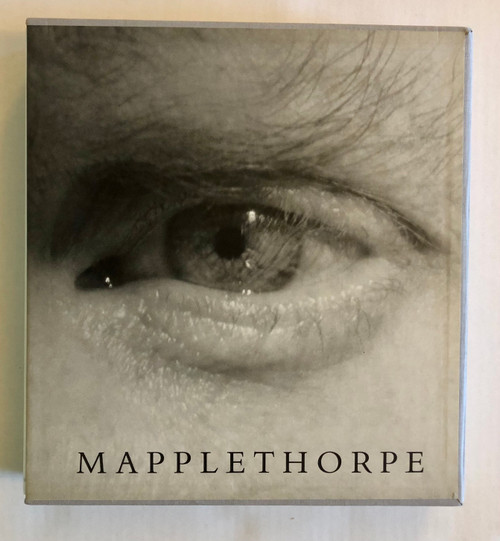 Mapplethorpe by Arthur C Danto (First Edition)