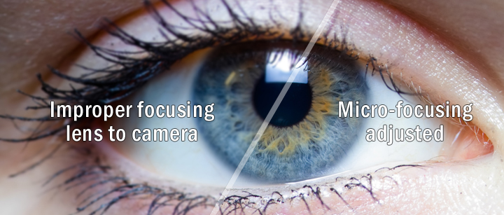 micro-focusing-image-for-web.jpg