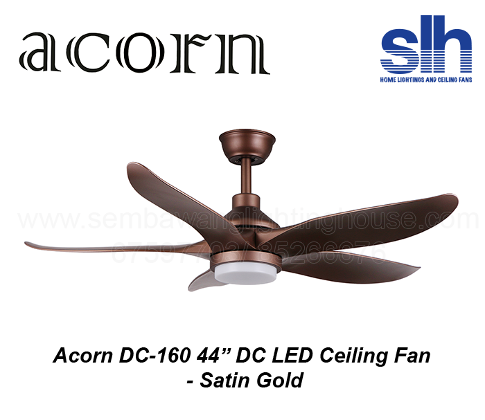 acorn-dc-160-44-inch-dc-led-ceiling-fan-sembawang-lighting-house-satin-gold-.png