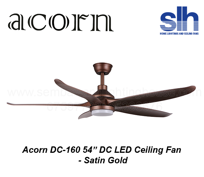 acorn-dc-160-54-inch-dc-led-ceiling-fan-sembawang-lighting-house-satin-gold-.png