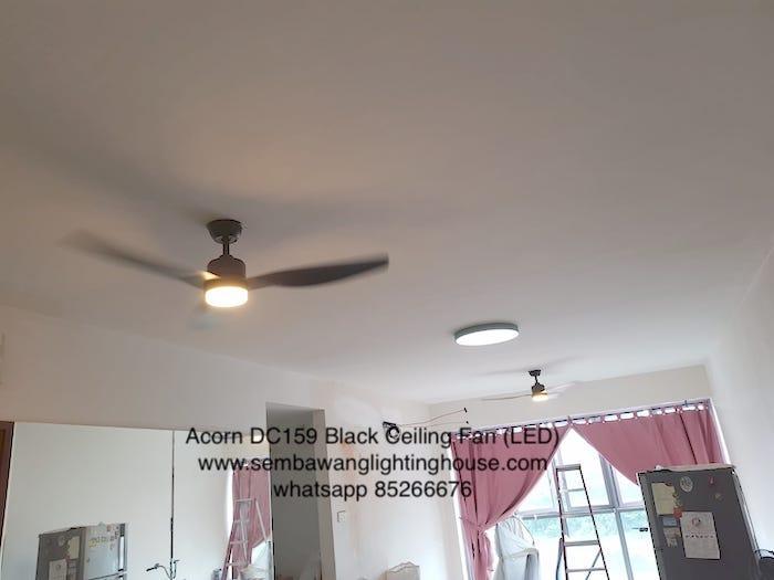 acorn-dc159-black-ceiling-fan-led-sample-sembawang-lighting-house-2.jpg