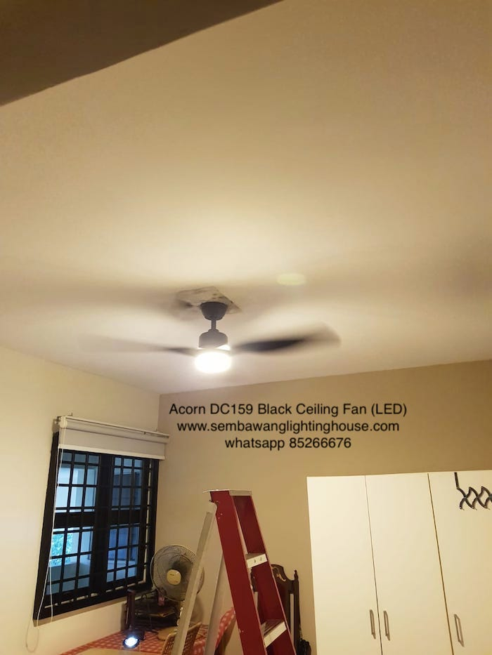 acorn-dc159-black-ceiling-fan-led-sample-sembawang-lighting-house-4.jpg