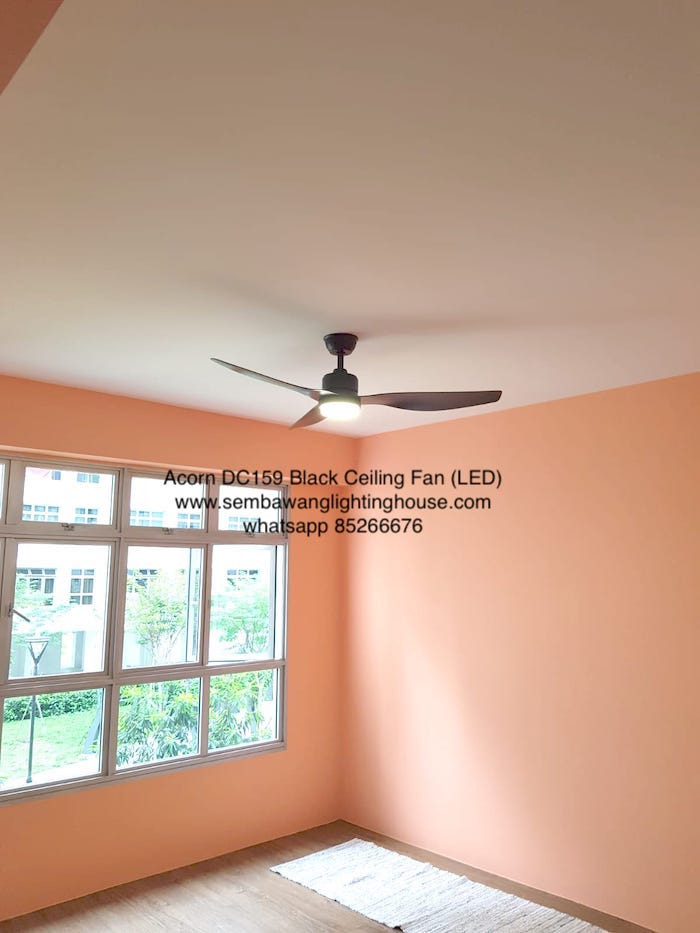 acorn-dc159-black-ceiling-fan-sample-sembawang-lighting-house-3.jpeg