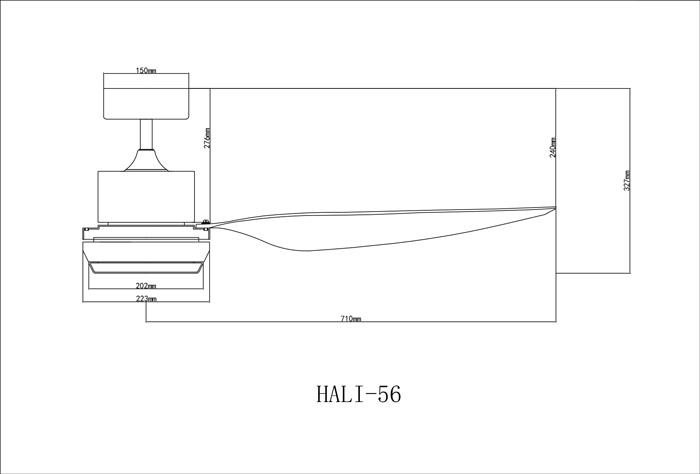 hali-dimensions.jpg