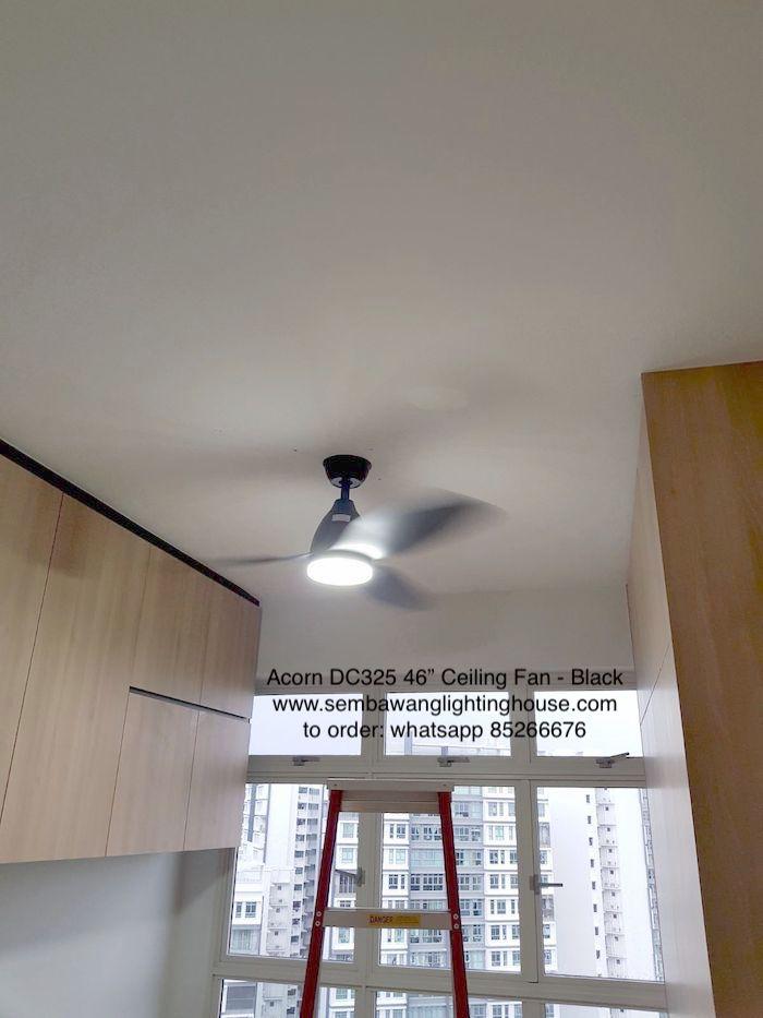 sample-01-acorn-dc325-black-ceiling-fan-sample-sembawang-lighting-house-.jpg