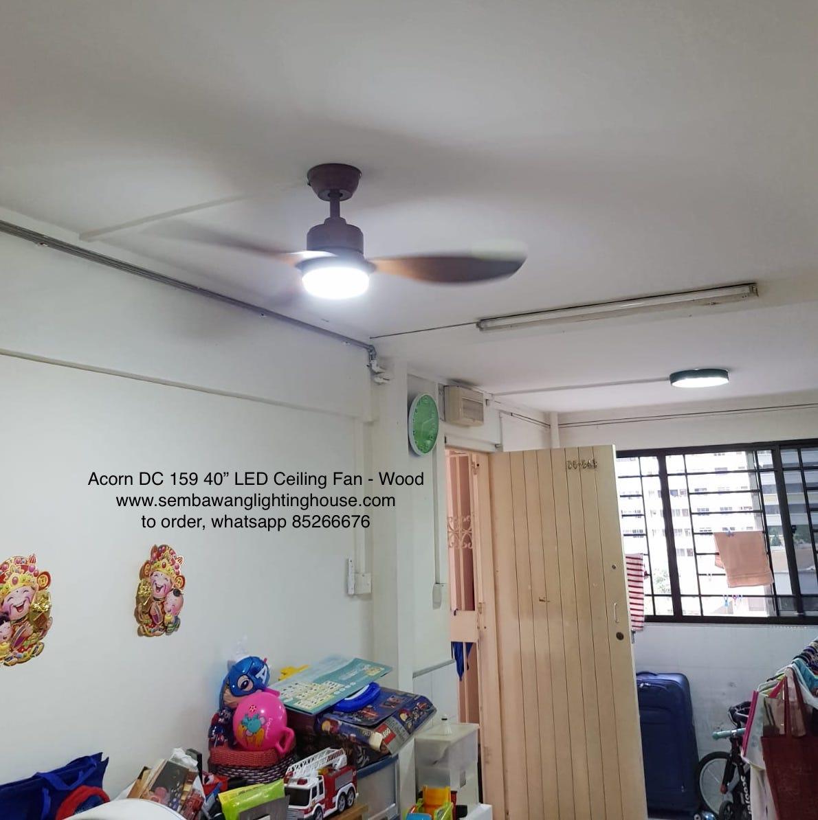 sample01-acorn-dc159-40-22-ceiling-fan-sembawang-lighting-house.jpg