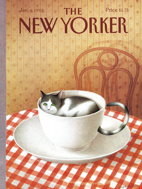 CATTUCCINO - 1000 Pcs - New Yorker