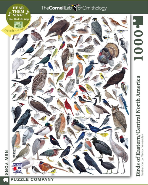 BIRDS OF EASTERN/CENTRAL NORTH AMERICA- 1000 Pcs