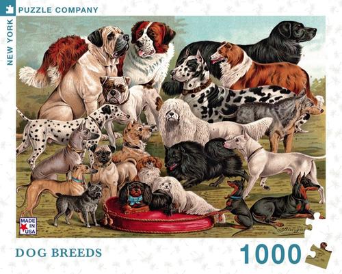 DOG BREEDS- 1000 Pcs