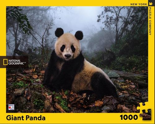 GIANT PANDA- 1000 Pcs