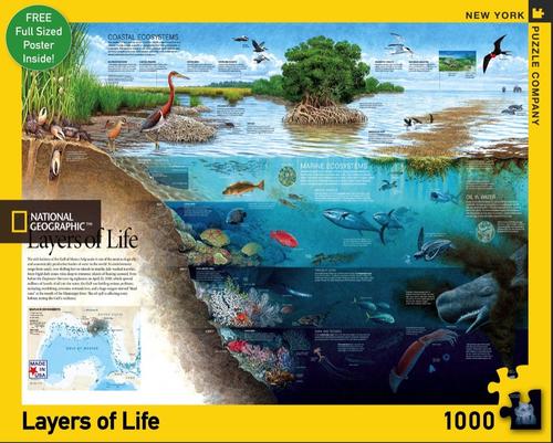 LAYERS OF LIFE- 1000 Pcs