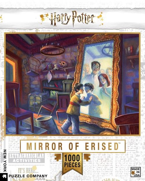 HARRY POTTER MIRROR OF ERISED- 1000 Pcs