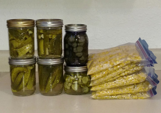 Food Preservation - Fighting Food Waste