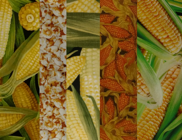 A-Maize-ing Design