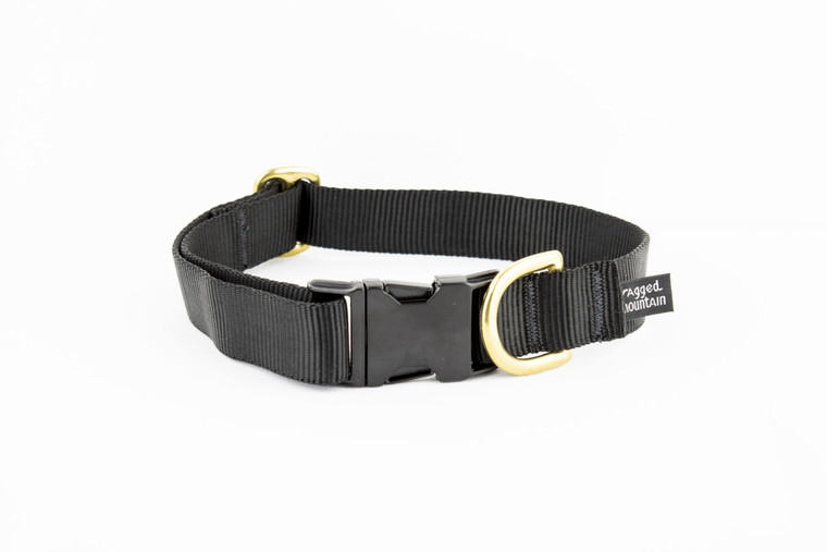 Brass Pet Collar