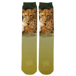 Lion N Cub 2 Sublimation Tube Socks