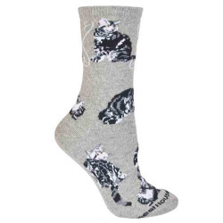 Men's Silver Tabby Cat on Gray Socks
