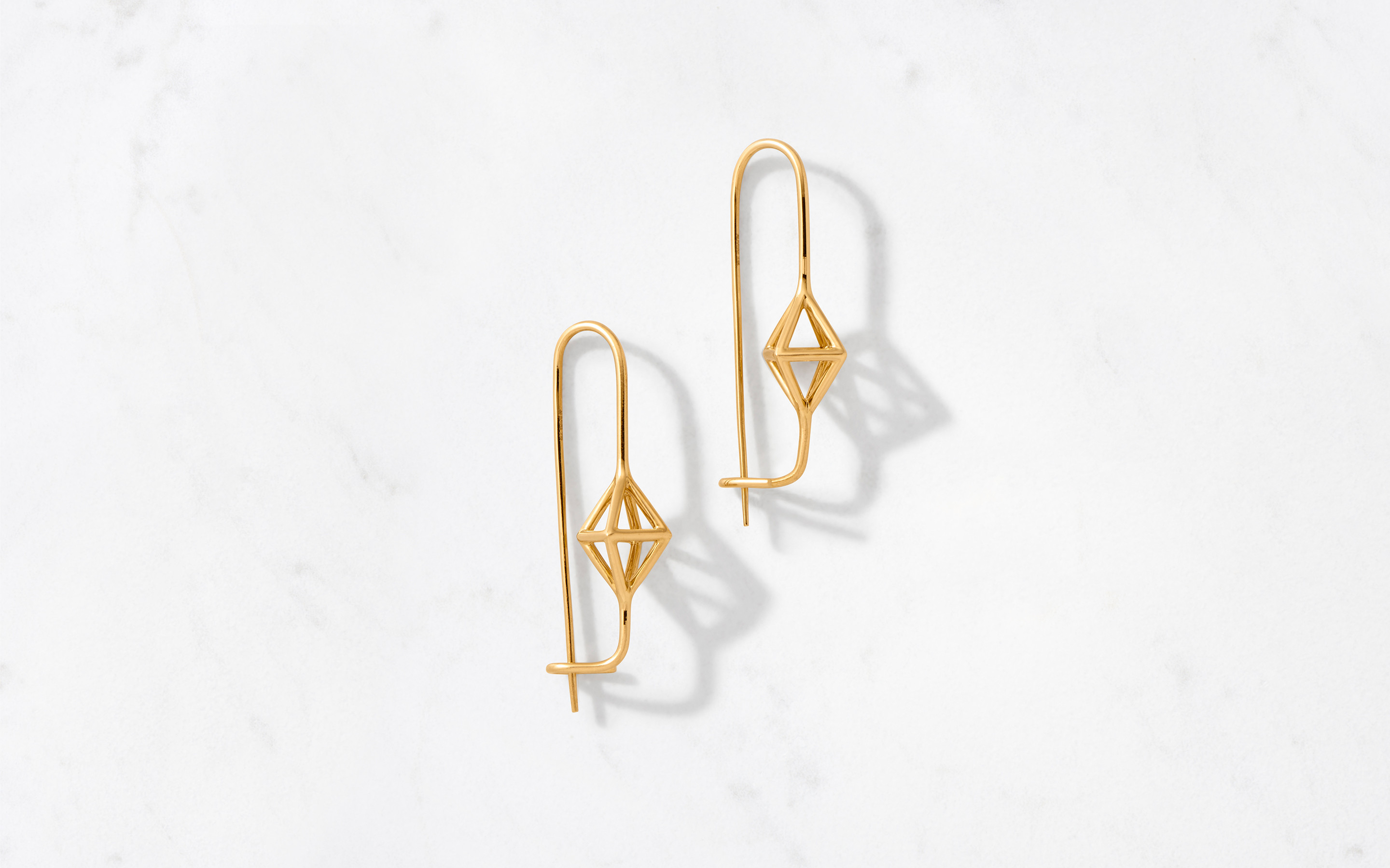 Cage Hook Earring Polished