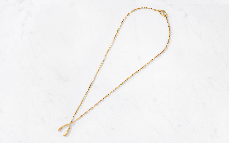 Wishbone Pendant & Chain Large/Polished