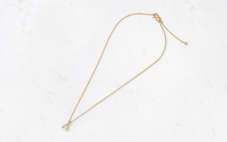 Wishbone Pendant & Chain Small/Satin
